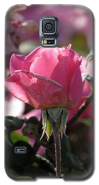 Galaxy S5 Case featuring the photograph Not Perfect But Special by Laurel Powell