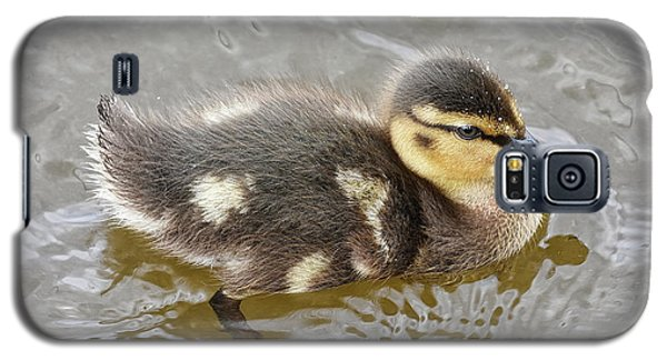 Not So Ugly Duckling Galaxy S5 Case