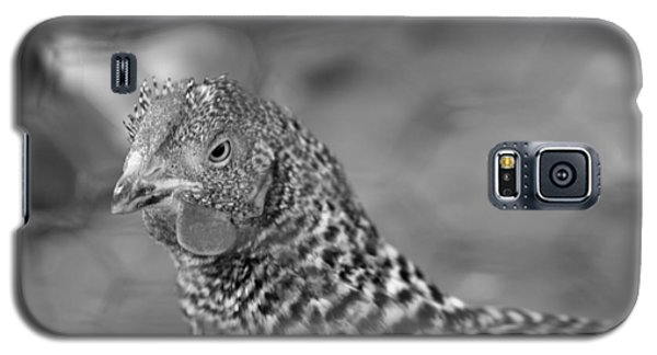 Galaxy S5 Case featuring the photograph Not Your Chicken Dinner by Lora Lee Chapman