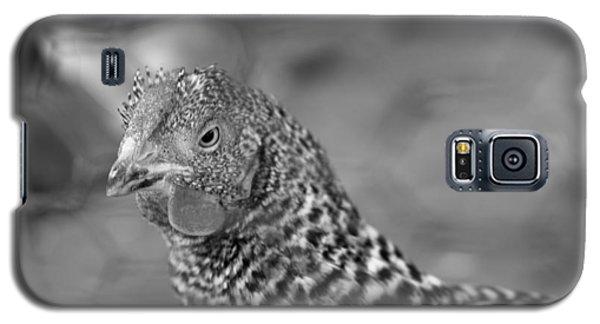 Not Your Chicken Dinner Galaxy S5 Case