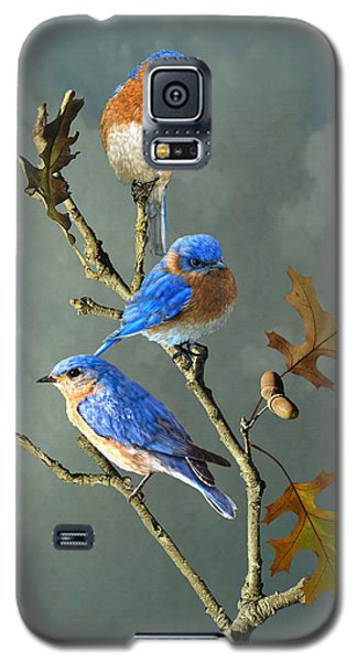 Nothing But Bluebirds Galaxy S5 Case