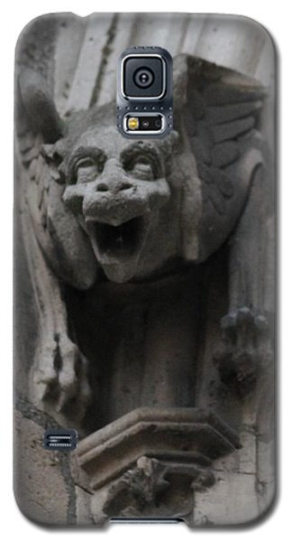 Notre Dame 1 Galaxy S5 Case