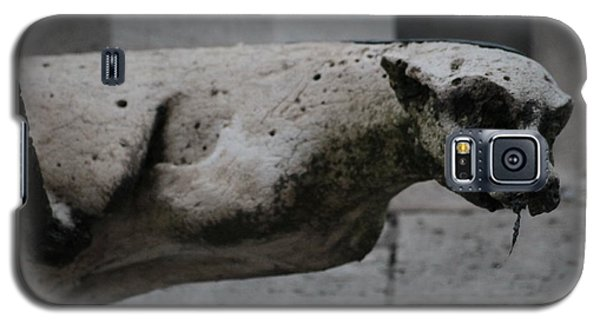 Galaxy S5 Case featuring the photograph Notre Dame Bat Gargoyle by Christopher Kirby