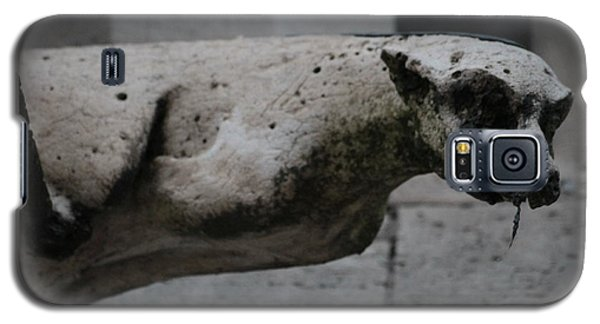 Notre Dame Bat Gargoyle Galaxy S5 Case by Christopher Kirby