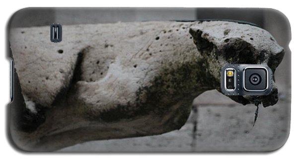 Notre Dame Bat Gargoyle Galaxy S5 Case