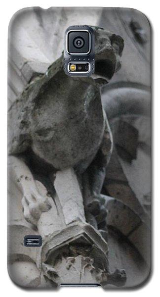 Notre Dame Gargoyle Grotesque Galaxy S5 Case