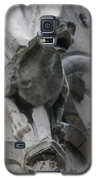 Notre Dame Gargoyle Grotesque Galaxy S5 Case by Christopher Kirby