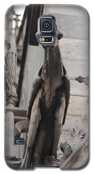 Rain Spouting Gargoyle. Galaxy S5 Case