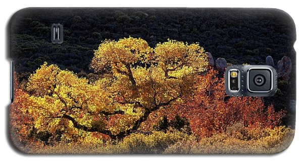 November In Arizona Galaxy S5 Case
