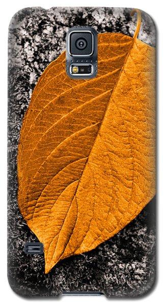 November Leaf Galaxy S5 Case by Ari Salmela