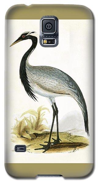 Numidian Crane Galaxy S5 Case by English School