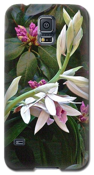 Nun Orchid Galaxy S5 Case