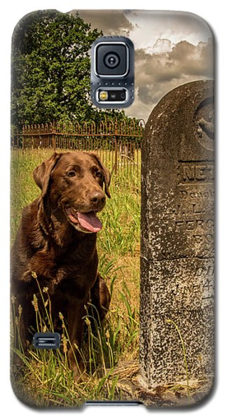 Galaxy S5 Case featuring the photograph Nute In The Cemetery by Jean Noren