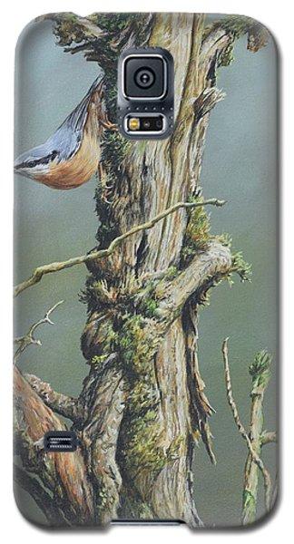 Nuthatch Galaxy S5 Case