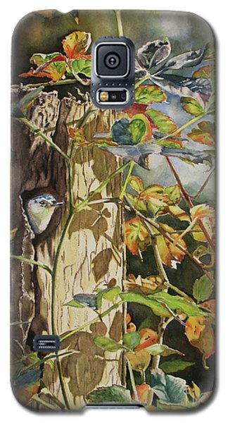 Nuthatch And Creeper Galaxy S5 Case