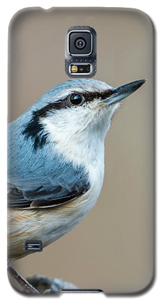 Nuthatch's Pose Galaxy S5 Case