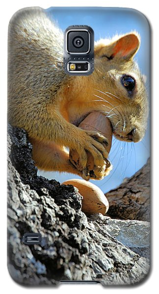 Galaxy S5 Case featuring the photograph Nutjob by Debbie Karnes