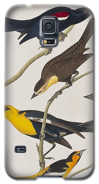 Nuttall's Starling Yellow-headed Troopial Bullock's Oriole Galaxy S5 Case by John James Audubon