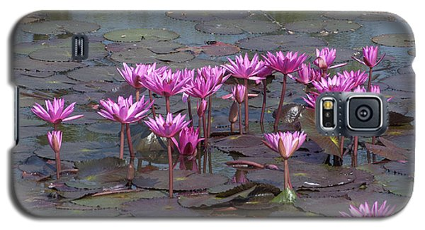 Nymphaea Water Lily Dthst0079 Galaxy S5 Case
