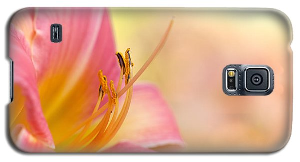 O That Summer Passion Galaxy S5 Case