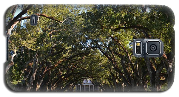 Oak Alley Plantation Galaxy S5 Case by Maggy Marsh
