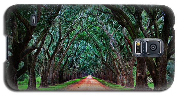 Oak Alley Road Galaxy S5 Case