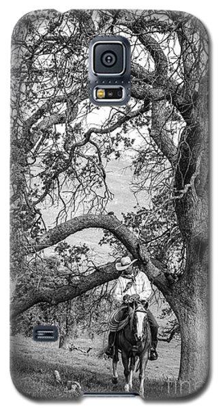 Oak Arches Galaxy S5 Case