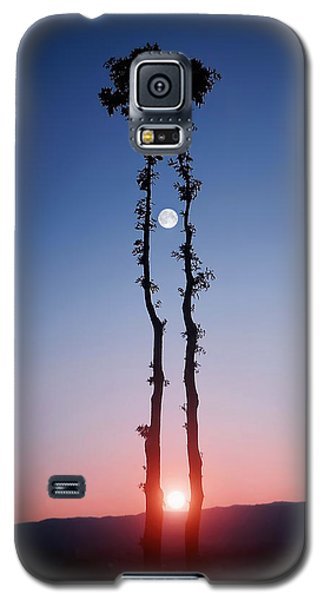 Galaxy S5 Case featuring the photograph Oak Kissing by Bess Hamiti