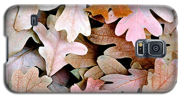 Oak Leaves Photo Galaxy S5 Case