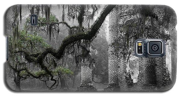 Oak Limb At Old Sheldon Church Galaxy S5 Case