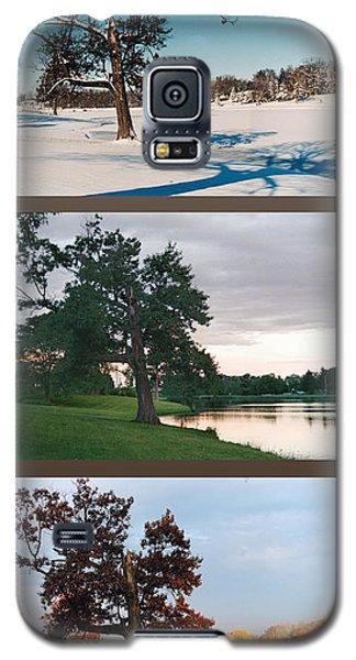 Oak Tree Through Seasons Galaxy S5 Case by Peg Toliver