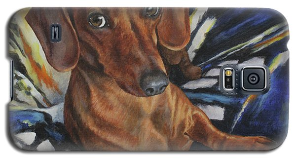 Dachshund Time Lord Galaxy S5 Case