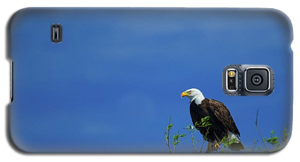 Observe And Report Galaxy S5 Case