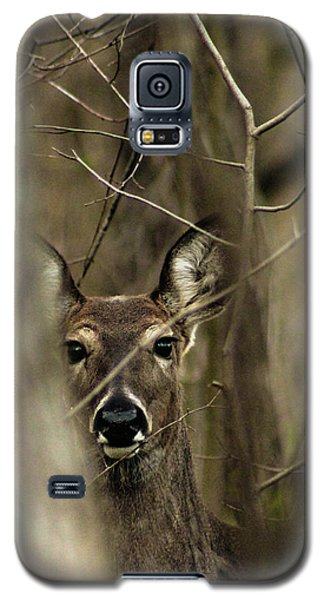 Observed  Galaxy S5 Case
