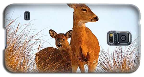 Ocean Deer Galaxy S5 Case