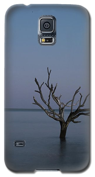 Ocean Tree Galaxy S5 Case