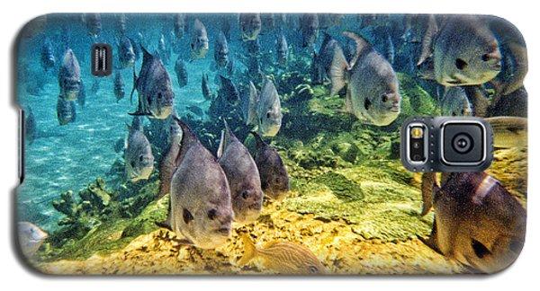 Oceans Below Galaxy S5 Case