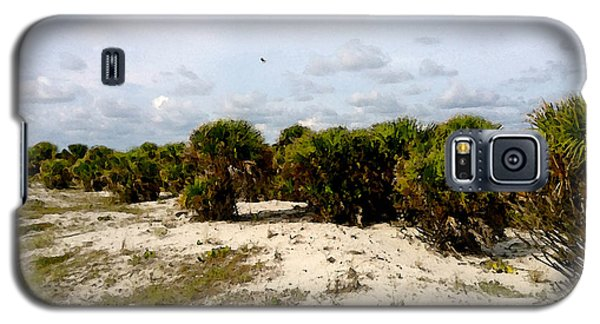 Oceans Bluff   Galaxy S5 Case by Iconic Images Art Gallery David Pucciarelli