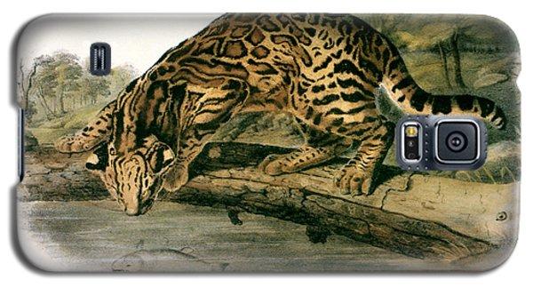 Audubon Galaxy S5 Case - Ocelot (felis Pardalis) by Granger