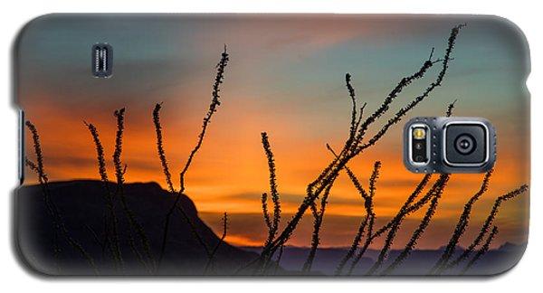 Ocotillo At Sunset Galaxy S5 Case
