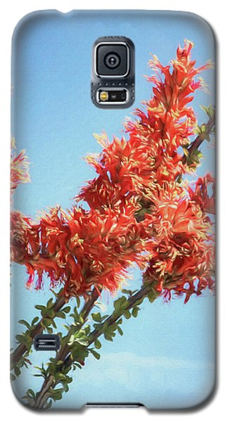 Ocotillo In Bloom Galaxy S5 Case