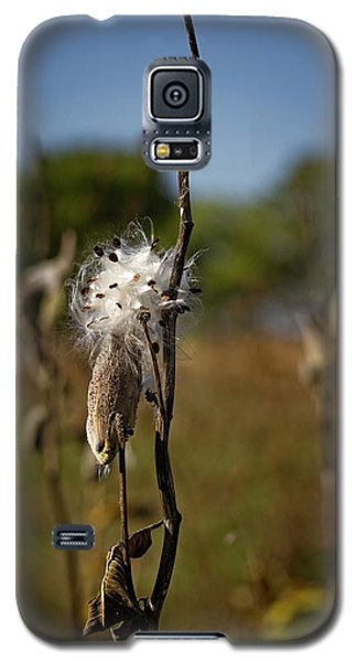 October Forests Galaxy S5 Case