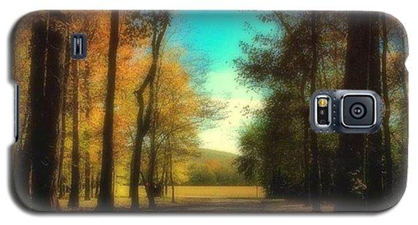 October Path Galaxy S5 Case by Steven Gordon