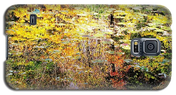 October Pond Galaxy S5 Case by Melissa Stoudt