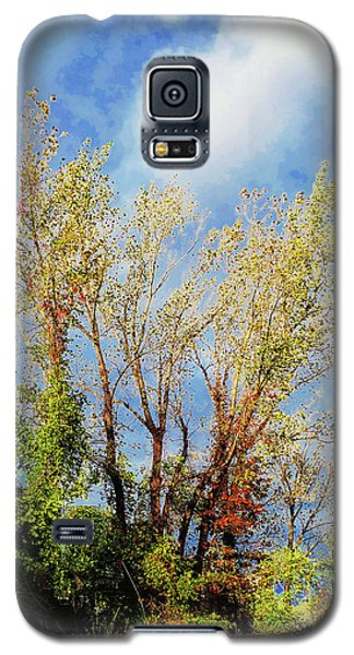 October Sunny Afternoon Galaxy S5 Case