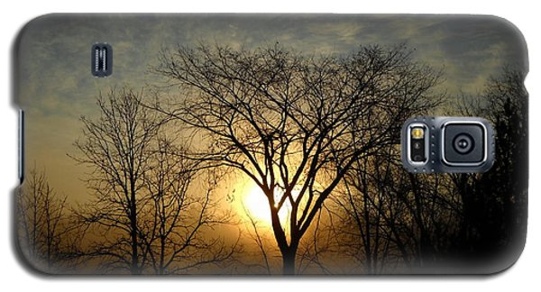 October Sunrise Behind Elm Tree Galaxy S5 Case