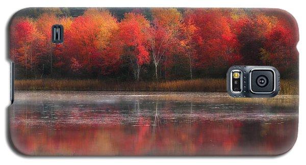 October Trees - Autumn  Galaxy S5 Case