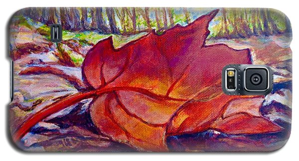 Ode To A Fallen Leaf Painting Galaxy S5 Case by Kimberlee Baxter