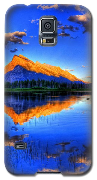 Of Geese And Gods Galaxy S5 Case by Scott Mahon
