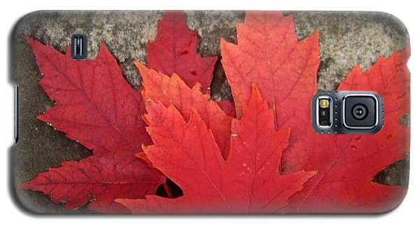 Oh Canada Galaxy S5 Case